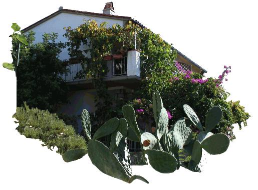 la casa Pomonte Isola Elba